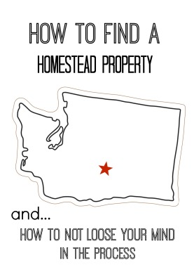 HOW TO FIND A HOMESTEAD PROPERTY